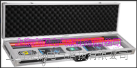 BDS北斗同步卫星授时高压核相仪 LYWHX-9800