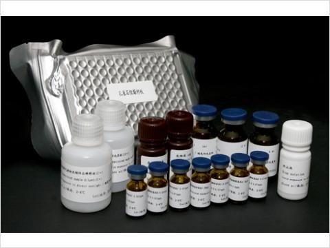 96T,48Tα1-AGP试剂盒,牛α1酸性糖蛋白Elisa试剂盒