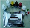 人XC趋化因子受体1(XCR1)ELISA检测试剂盒说明书