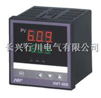 8路带打印温度巡检仪 XMTJ801WT/802WT