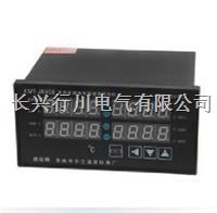 4路可编程温控记录仪 XMTKA4138P