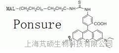 罗丹明B-PEG马来酰亚胺