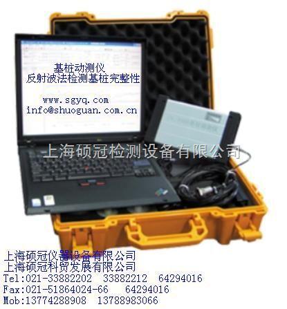 P800基桩动测仪